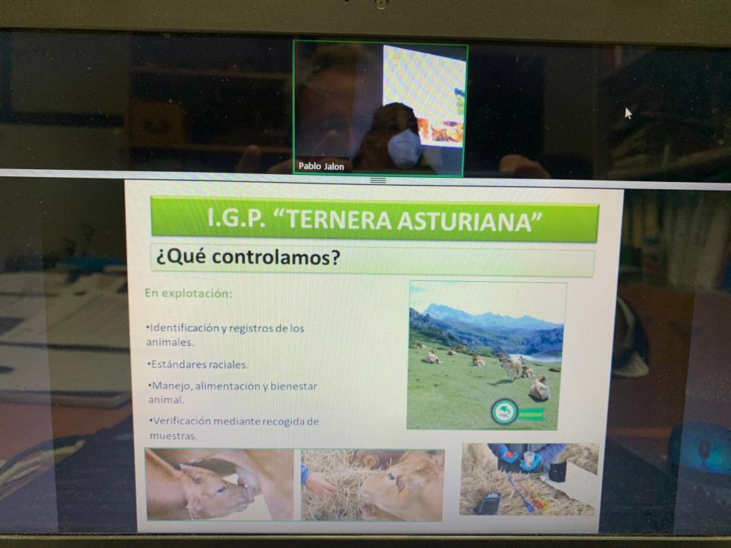 Ternera Asturiana como ejemplo de las garantías adicionales